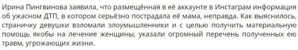 Ирина Пингвинова отрицает причастность к мошенничеству